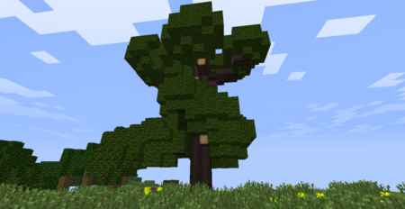 Great tree.png